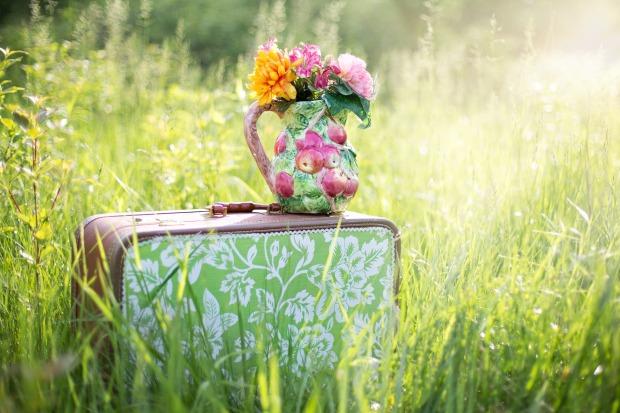 summer-still-life-785231_1920